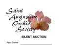 SAOS Silent Auction Form